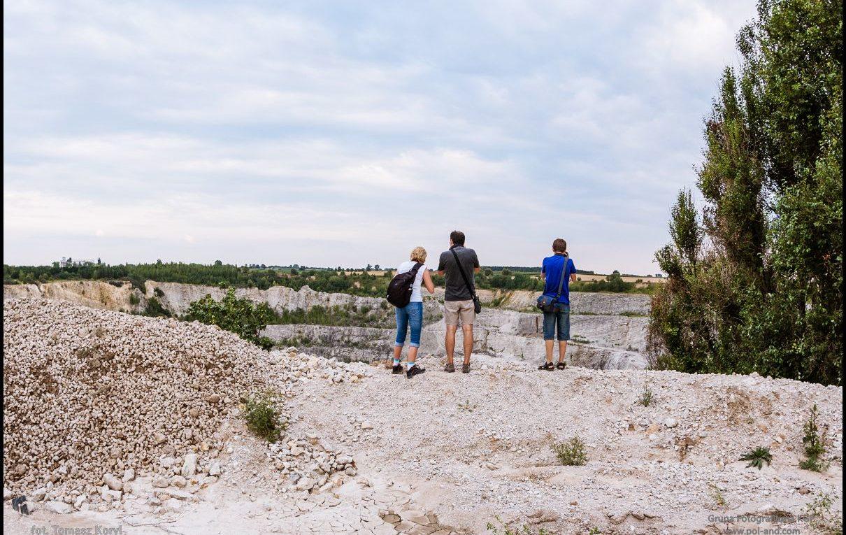 Kamieniołom Bielawy - złoża skał wapiennych, eksploatowane metodą odkrywkową