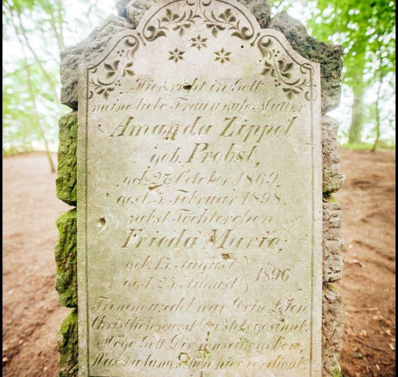 Wartosław, cmentarz ewangelicki, gmina Wronki, Plener fotograficzny